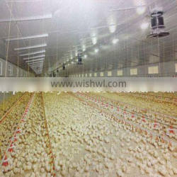 chicken broiler rearing cage feeder