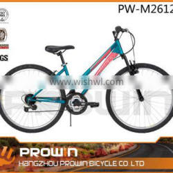 2015 26 inch russian style discount mountain biking (pw-m26121)