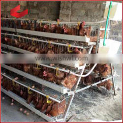 Dar Es Salaam Tanzania Poultry Farm Best Sale Chicken Cages