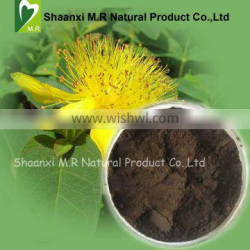 2015 New Arrival !!!!!!!!!!!! St John's Wort Extract