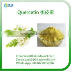 Natural Herbal Extract Quercetin HPLC95%/UV98%