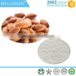 Manufacturer supply natural extract Bitter Apricot Seed Extract 98% Amygdalin/Vitamin B17 CAS NO. 29883-15-6