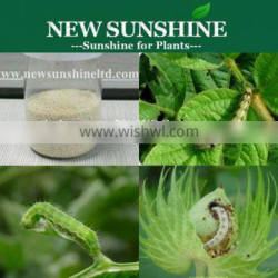 Hot! Emamectin benzoate 5%SG insecticide and pesticide