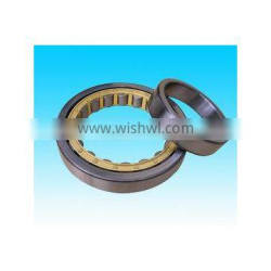 Manufacturer for Cylindrical Roller Bearing NU305 with High Quality