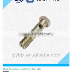 hydraulic hose banjo fittings/gas fittings