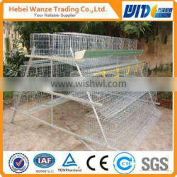 hot-dipped galvanized layer chicken cage with auto water drinking system for factory