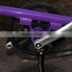 Made for Taiwan folding bike,exercise bike ,foldable bicycle