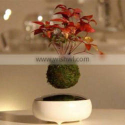 Decorative artificial magnetic levitation floating plant bonsai