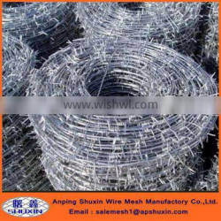 galvanized barbed wire/PVC coated barbed wire