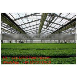 buiild agricultural Greenhouse&Sun board greenhouses