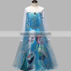 Princess Frozen Elsa Costume Girl Fancy Dress walson