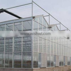 The Sunlight Greenhouse for Flowers