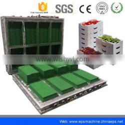 china polyfoam/ eps fish box plastic mould making for sales