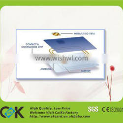 social security card with quality assurance and fast delivery