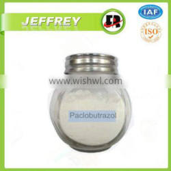 Factory best price paclobutrazol 10 wp