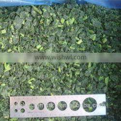 Frozen style fresh spinach chopped 2015