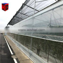 Hot sale Polycarbonate sheet cheap garden greenhouse for agriculture
