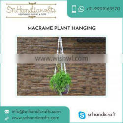 Decorative Macrame Plant Hanging Available for Indoor and Outdoor Use