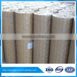 Concrete Reinforcing Galvanized Welded wire mesh in roll