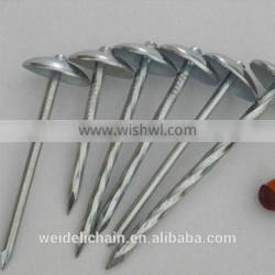 High quality roofing nails/umbrella roofing nails/umbrella head roofing nails