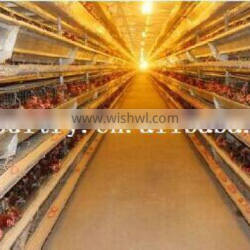 """cheap """"H"""" type chicken cages design"""