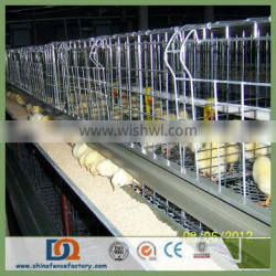 Trade Assurance Automatic Nipple Drinker Broiler Cage System