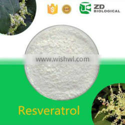 Herbal extract resveratrol powder