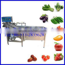 Leafy Vegetable Ozone Washer Machine