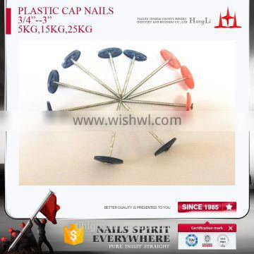 Plastic cap nails with different color high quality factory