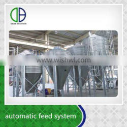 China factory supply save time and labor automatic feeding system for pig