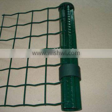 Holland electric welded wire mesh/HDG wire/best quality