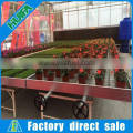High Quality Greenhouse Wleded Wire Mesh Seedbed