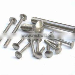 China manufacture Carriage Bolts