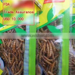 Pet Food Supplies Fish Food Mealworms Golden Yellow(2.8cm)