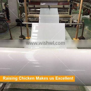 PP Belt Type Chicken Manure System for H Type Poultry Equipment