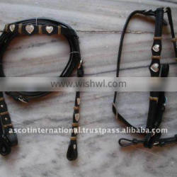 Western Concho Rawhide Headstall and Breastcollar