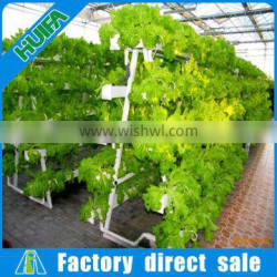vegetable hydroponics vertical grow system commercial type greenhouse