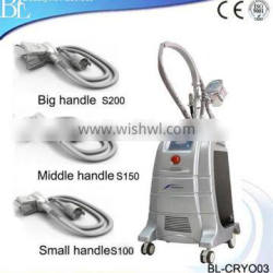Guangzhou BL New Stationary Cryolipolysis Increasing Muscle Tone Fat Freeze Machine For Weight Reducing Loss Weight
