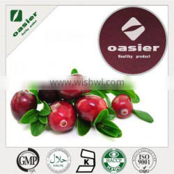 Best Selling Products Cranberry Fruit Powder With ISO Kosher Certificate