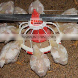 ^Chicks Pan Feeder With Good quality