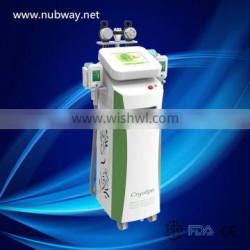 Flabby Skin Hot Selling 5 Handle Weight Loss With A Big Discount Slimming Machine With 3 Cryolipolysis Probes Lose Weight