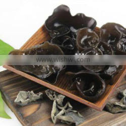 Chinese Dry Black Fungus with Size 2.5CM above