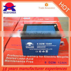 Electric bike battery 24v 12ah