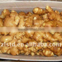 Ginger supplier in China