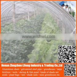 best selling 20/30/40/50 mesh hdpe plastic agriculture greenhouse vegetable and fruit anti-insect net , nylon insect net