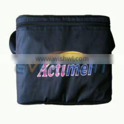 cooler bag ice pack