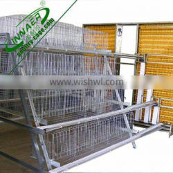 h type hen cage for sales