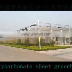 The Cheapest Vegetable Farming Large Scale Glass Greenhouse