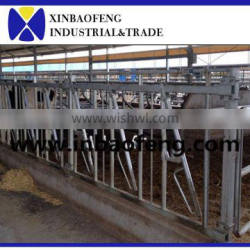 milk dairy products cattle livestock cheap cattle panels for sale cattle headlock