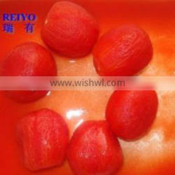 china wholesalers canned tomato in tins